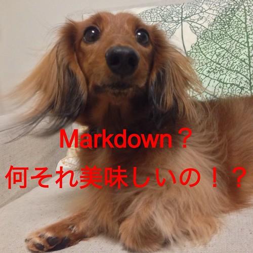 フォルテ_Markdown