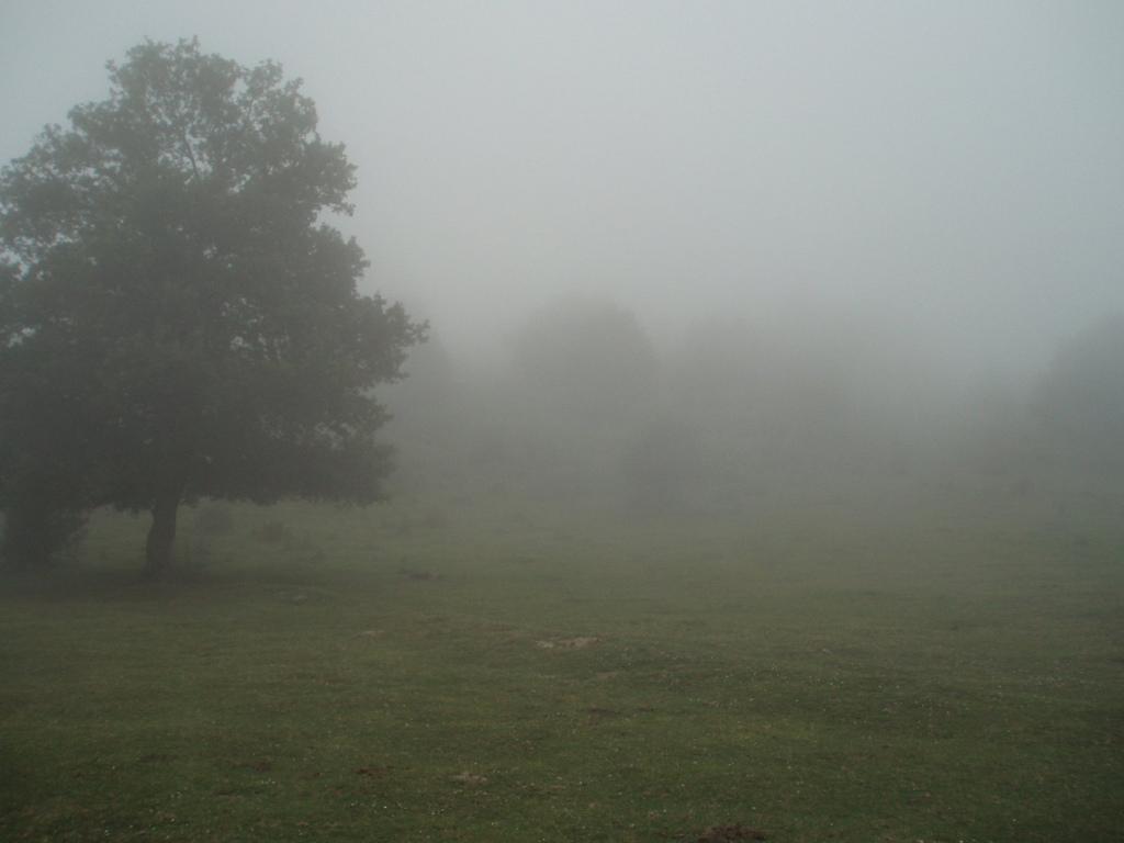 5. Niebla en los Pirineos navarros. Autor, Anamfp