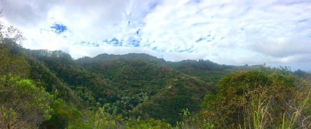 Picture from the Kealia Trail