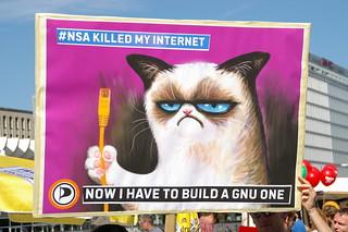 Grumpy Cat builds a GNU Internet