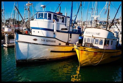Sunshine - Princeton Harbor - 2013