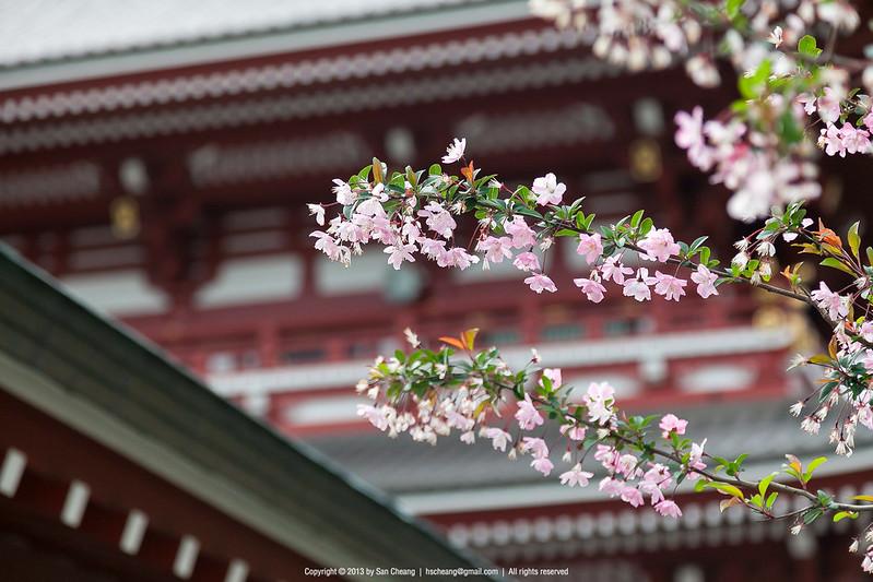 淺草觀音寺