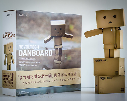Danbo Renewal Box!