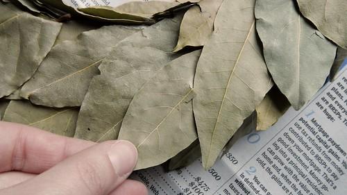 Bay Leaf Wreath 12