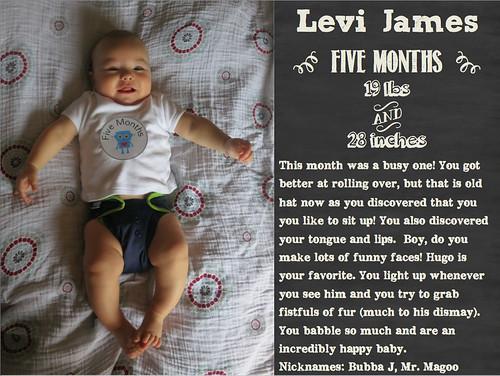 five_months-imp