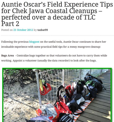 Auntie Oscar's Field Experience Tips for Chek Jawa Coastal Cleanups – perfected over a decade of TLC Part 2 | News from the International Coastal Cleanup Singapore