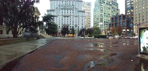 North Plaza - Bark Mulch