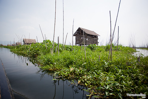 Trekking Kalaw-Inle (día 3) Myanmar