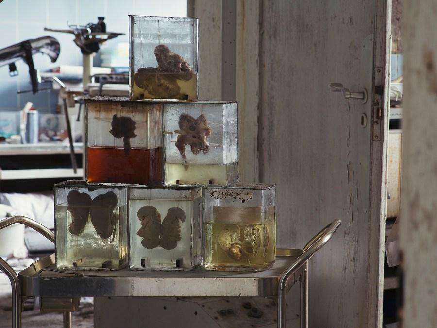 Dr Anna's House urbexlocatie, foto door Rebecca Bathory| Standort Hamburg