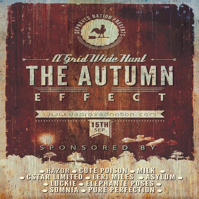 Autumn Effect Poster 2013 Final