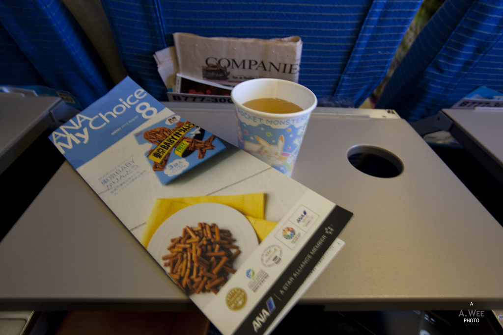 Inflight Consomme and Menu