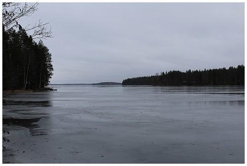 Näkymä järvenselälle. Ohutta jäätä, jonka pinnalle vesi lainehtii. Jouluinen harmaus.