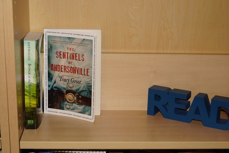 Empty Shelf #2: The Sentinels of Andersonville