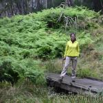 02 Viajefilos en Australia. Barrington NP 33