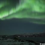 Viajefilos en Tromso, Auroras Boreales 025