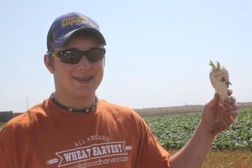 Sugar beets in Nebraska!