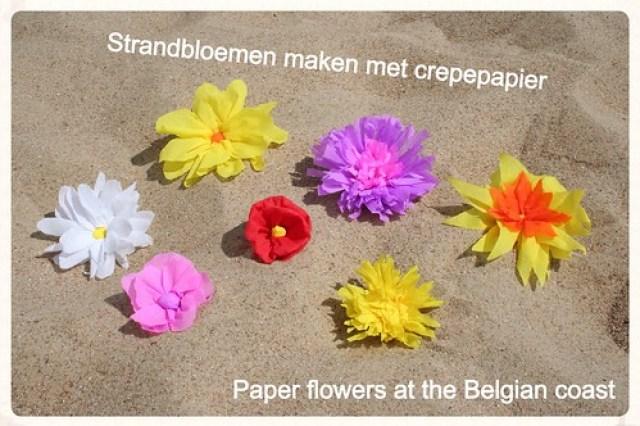 Soorten strandbloemen overview (1)