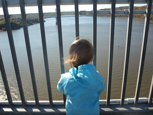 looking out on the hudson