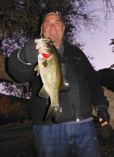 3.5 Pound Bass