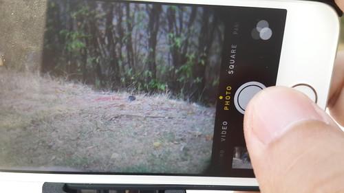 หากใช้เลนส์เสริมติดกล้อง ปุ่มชัตเตอร์ก็อยู่ที่ว่าสมาร์ทโฟนตัวนั้นให้มายังไง