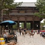 Nara-11