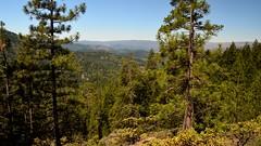 Oregon 02