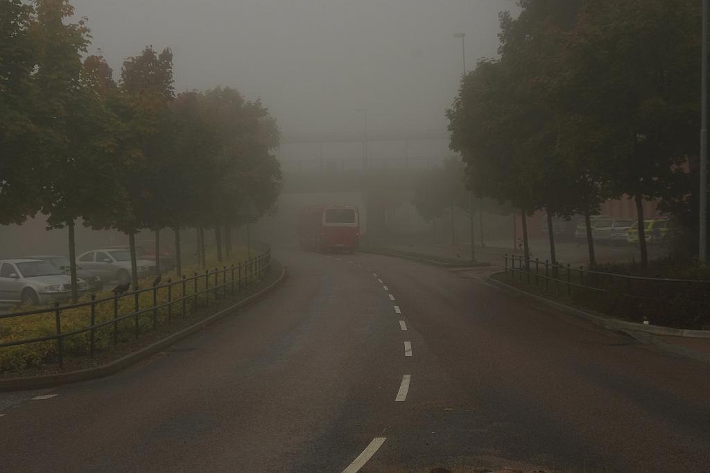Bussväg