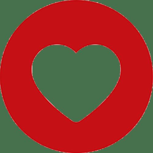 Logo_Heart-&-Stroke-Foundation-of-South-Africa_www.heartfoundation.co.za_dian-hasan-branding_ZA-2
