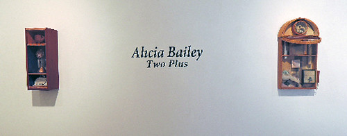 Alicia Bailey Two Plus install1