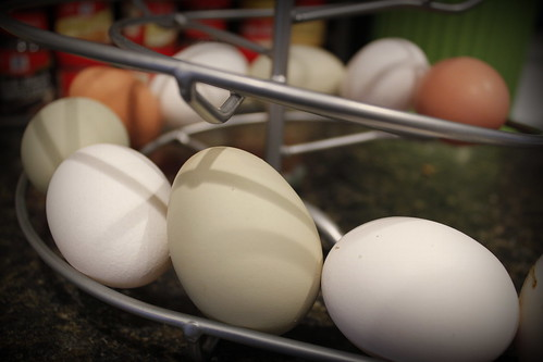 20140117. Finally, more than white eggies in the skelter.