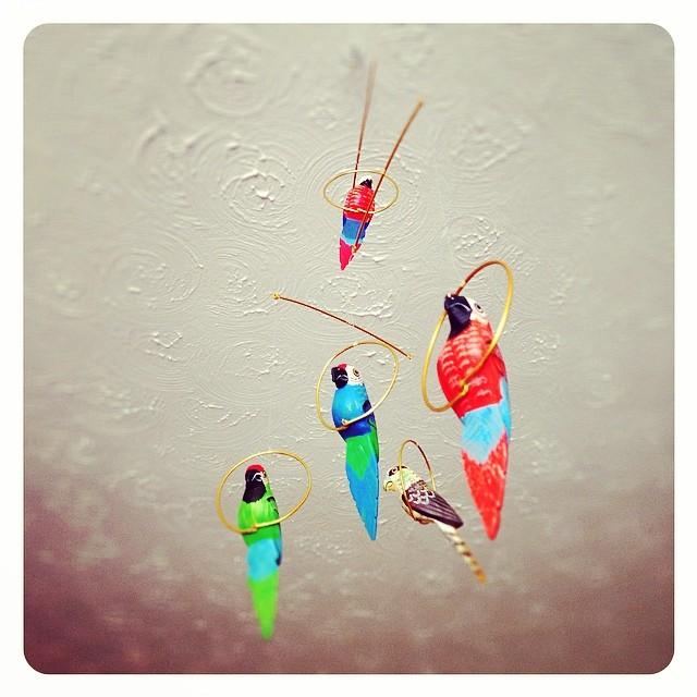 I have my own #enchanted #tiki #room!! #disney #100DaysOfDisney #waltdisneyworld