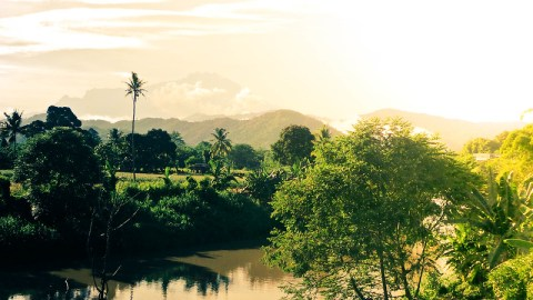 SGC - Landscape (2)