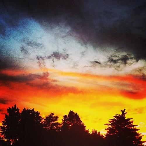 Backyard #sunset by @MySoDotCom