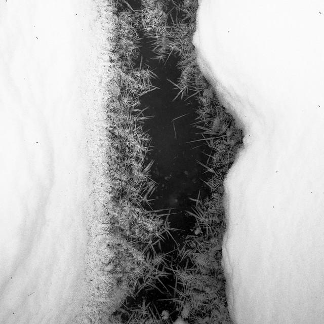 Pine Swamp ice