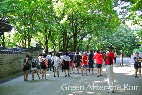 Seoul South Korea Changdeukgung Palace Secret Garden Tour
