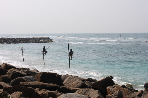 20130122_8374-stilt-fishermen copy