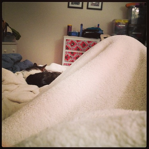 Day 12:30 Feeling cruddy & already in bed for the night.