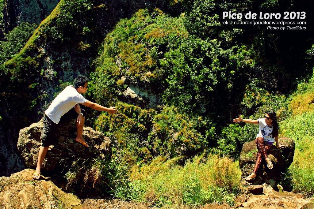 Pico_11