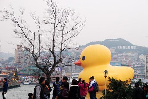 黃色小鴨與大家同樂
