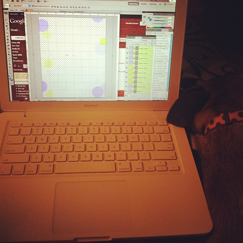 Working from home on the Etsy store with Tiny's help of course. #doglove #dog #Etsy