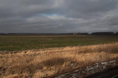 Open Russian fields beside the railway tracks in Ли́пецкая о́бласть (Lipetsk Oblast)