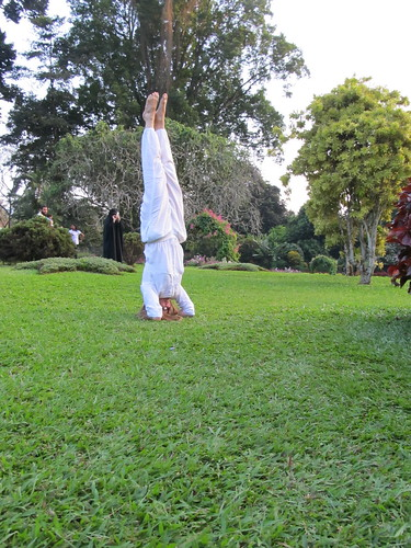 Yoga in the Botantical Gardens near Kandy