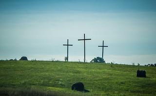 Coffindaffer Crosses