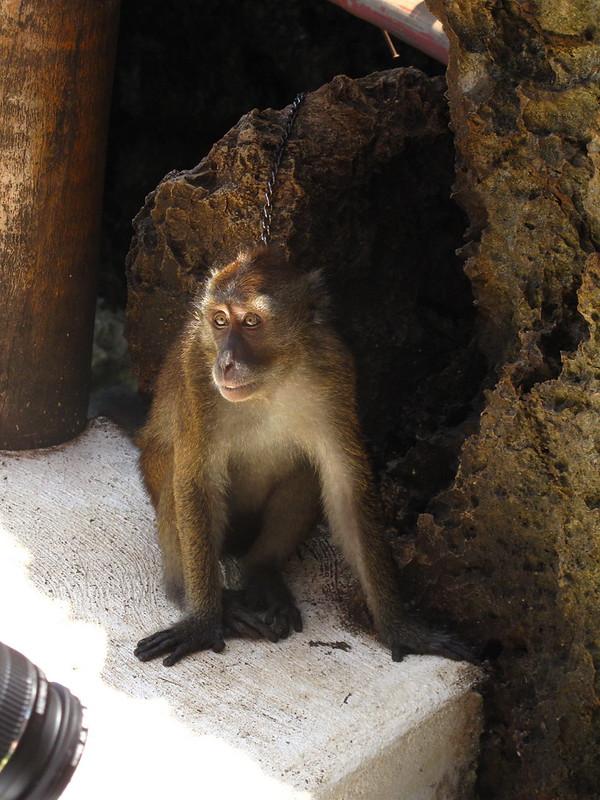 Boracay August 2008: Ariel's Point et al