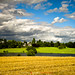 Leica M9 Landscape