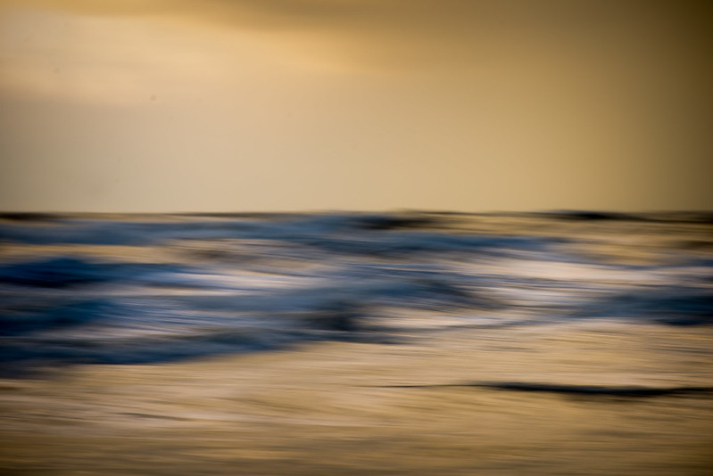 sea (in) motion 1