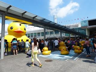 Ocean Terminal, Tsim Sha Tsui, Hong Kong - Rubber Duck Mania