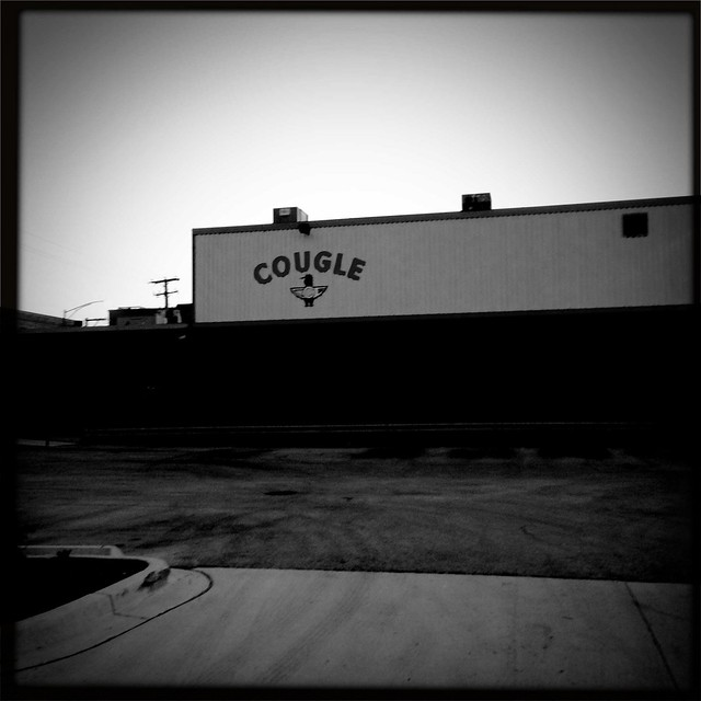 Cougle, Google's neighbor