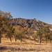 Lower High Peaks Trail