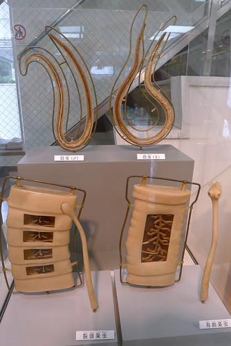 Meguro Parasitological Museum